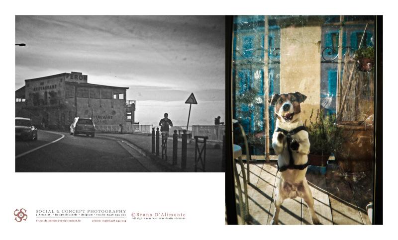 © 2014 Bruno DALIMONTE