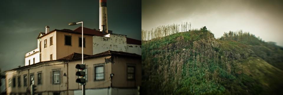 Funchal Vibes portfolio by Bruno DALIMONTE